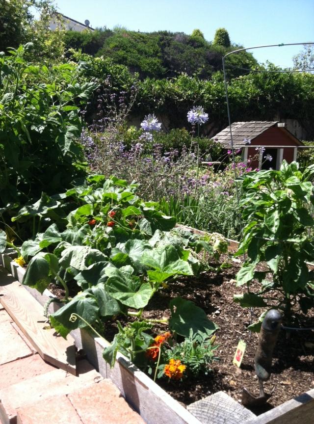 Sieger Garden
