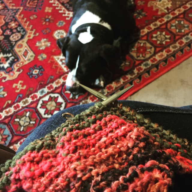 A Quiet Morning Knitting